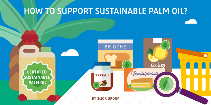How to support sustainable palm oil?